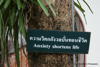 Many of the temple gardens are filled with signs of Buddhist teachings on which to meditate